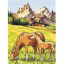 Paarden - Chevaux