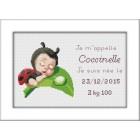 Geboortetegel Lieveheersbeestje - Plaquette de naissance Coccinelle