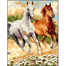 Galopperende paarden - Galopade