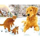 Hond en poezen - Chien et chats