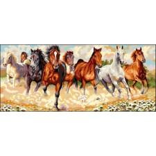 Kudde paarden - La horde sauvage