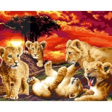 Leeuwenjongen - Les Lionceaux