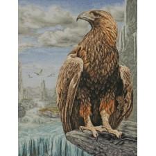 3D Arend - 3D Eagle