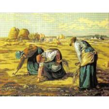 Werken op het veld