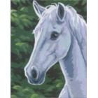 Paardenhoofd wit