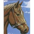 Paardenhoofd
