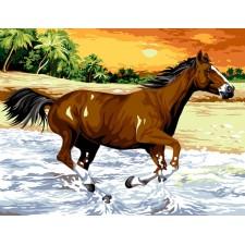 Paard in galop in de branding - Le galop de la vague