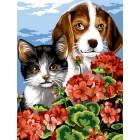 Poes en hond - Dite le avec des fleurs