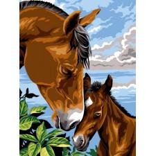 Paard en veulen - Dorloter