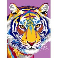 Tijger - Les dessins du tigre