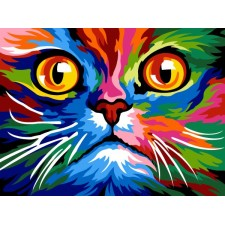 Kleurrijke poes - Face cat colored