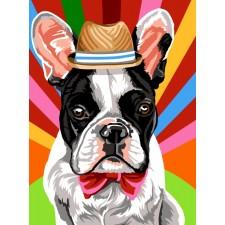 Hond met hoofddeksel - Canotier rayon