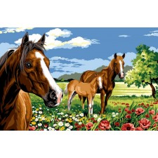 Paarden op de prairie - Les chevaux de la prairie
