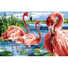 Flamingo-eiland - L'île aux flamants