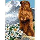 De marmot - La marmotte