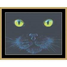 The Many Faces Collection - Black Cat