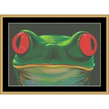 The Many Faces Collection - Frog Face