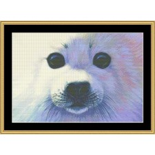 The Many Faces Collection - Harp Seal