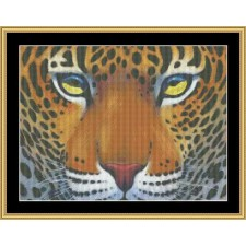 The Many Faces Collection - Leopard