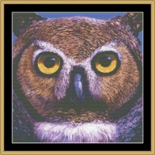 The Many Faces Collection - Owl
