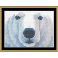 The Many Faces Collection - Polar Bear