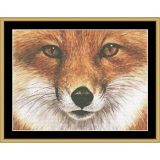 The Many Faces Collection - Red Fox
