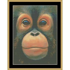 The Many Faces Collection - Baby Orangutan