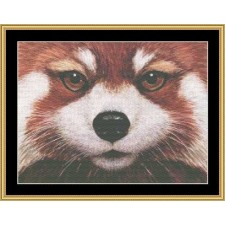 The Many Faces Collection - Red Panda