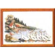 Ganzen aan het water