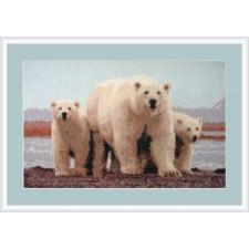 IJsbeer met jongen - Polar Love