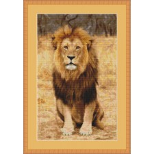 Leeuw - Golden King