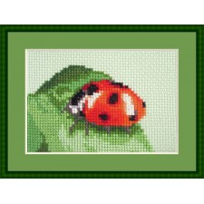 Lieveheersbeestje - Lady in Red