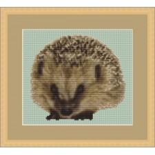 Egeltje - Prickly