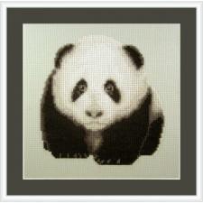 Speelse pandabeer - Playful Panda