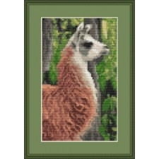 Alpaca - Wooly Fellow
