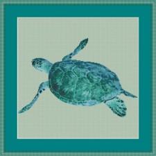 Zeeschildpad - Turtle Ocean