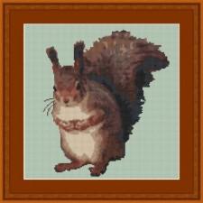 Eekhoorn - No Nut