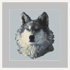 Wolf - Being Wolf