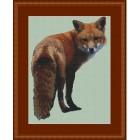 Vos - Looking Foxy