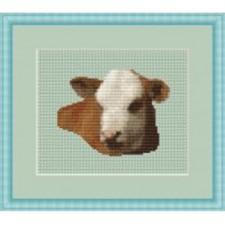 Koeienkop - Paddock Cuteness