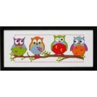 Uilen -Owls