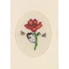 Flowercard poppy
