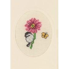 Flowercard anemone