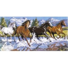 Galoperende paarden