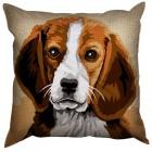 Hond (Beagle)