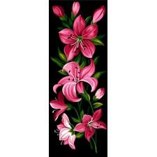 Roze lelies - Lys roses