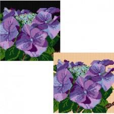 Kussen hortensia