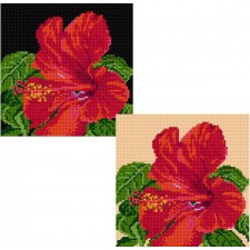 Kussen hibiscus