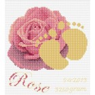 Geboortetegel roos - Birth sampler rose