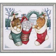 Gezellige kittens - Cozy Kittens